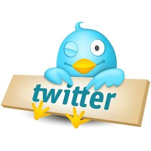 http://www.top30.com.br/news/wp-content/uploads/2009/06/twitter.jpg